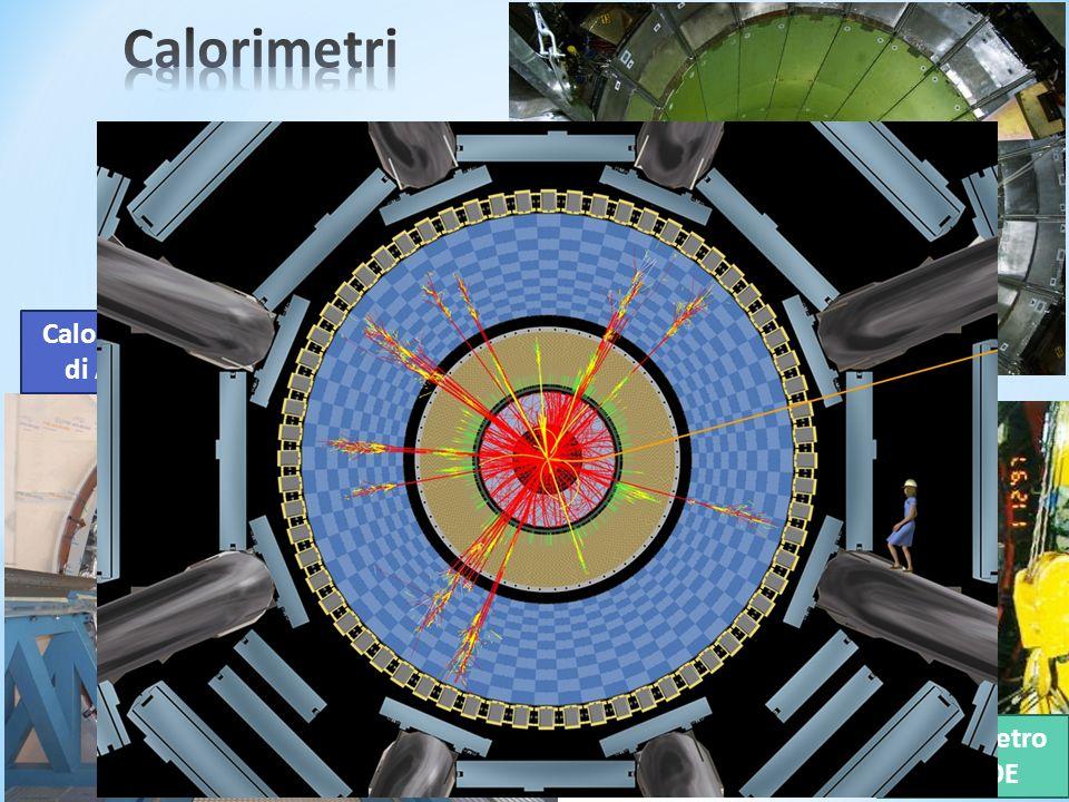 Calorimetro di ATLAS Calorimetro di CMS Calorimetro di KLOE