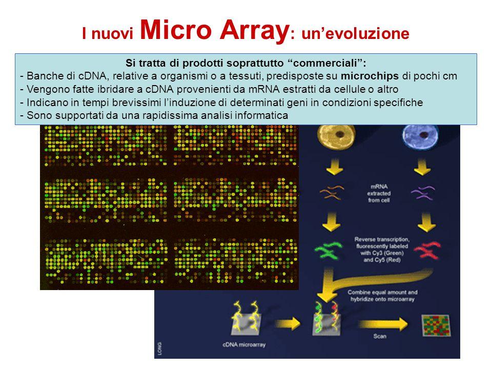 I nuovi Micro Array : unevoluzione Si tratta di prodotti soprattutto commerciali: - Banche di cDNA, relative a organismi o a tessuti, predisposte su m