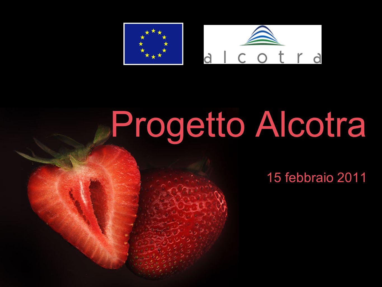 Progetto Alcotra 15 febbraio 2011