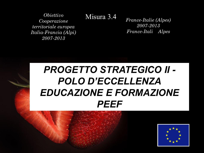 Obiettivo Cooperazione territoriale europea Italia-Francia (Alpi) 2007-2013 Misura 3.4 Coopération enne France-Italie (Alpes) 2007-2013 France-Italie (Alpes PROGETTO STRATEGICO II - POLO DECCELLENZA: EDUCAZIONE E FORMAZIONE PEEF PROGETTO STRATEGICO II - POLO DECCELLENZA: EDUCAZIONE E FORMAZIONE PEEF PROGETTO STRATEGICO II - POLO DECCELLENZA EDUCAZIONE E FORMAZIONE PEEF PROGETTO STRATEGICO II - POLO DECCELLENZA: EDUCAZIONE E FORMAZIONE PEEF PROGETTO STRATEGICO II - POLO DECCELLENZA: EDUCAZIONE E FORMAZIONE PEEF PROGETTO STRATEGICO II - POLO DECCELLENZA: EDUCAZIONE E FORMAZIONE PEEF