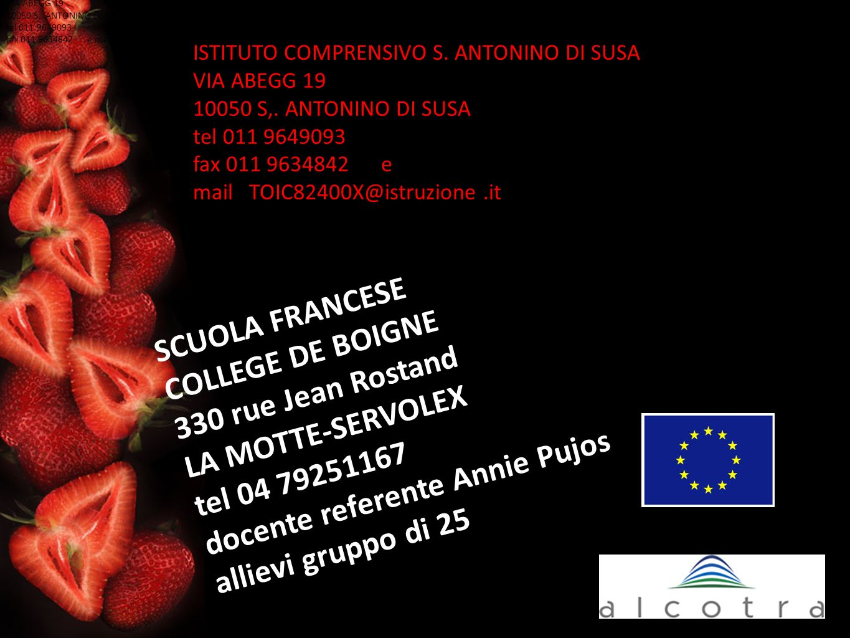 ISTITUTO COMPRENSIVO S.ANTONINO DI SUSA VIA ABEGG 19 10050 S,.