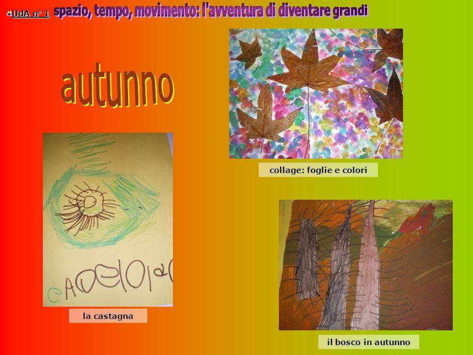 UdA n° 1 il bosco in autunno collage: foglie e colori la castagna