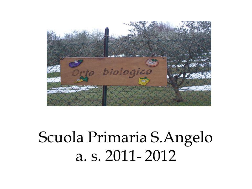 Scuola Primaria S.Angelo a. s. 2011- 2012