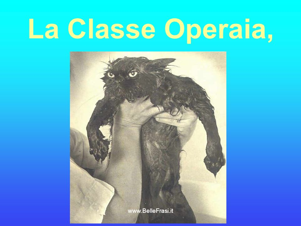 La Classe Operaia, www.BelleFrasi.it