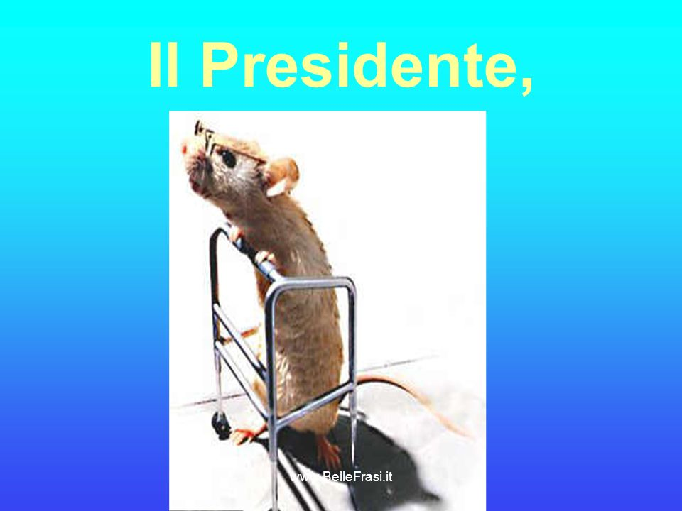 Il Presidente, www.BelleFrasi.it