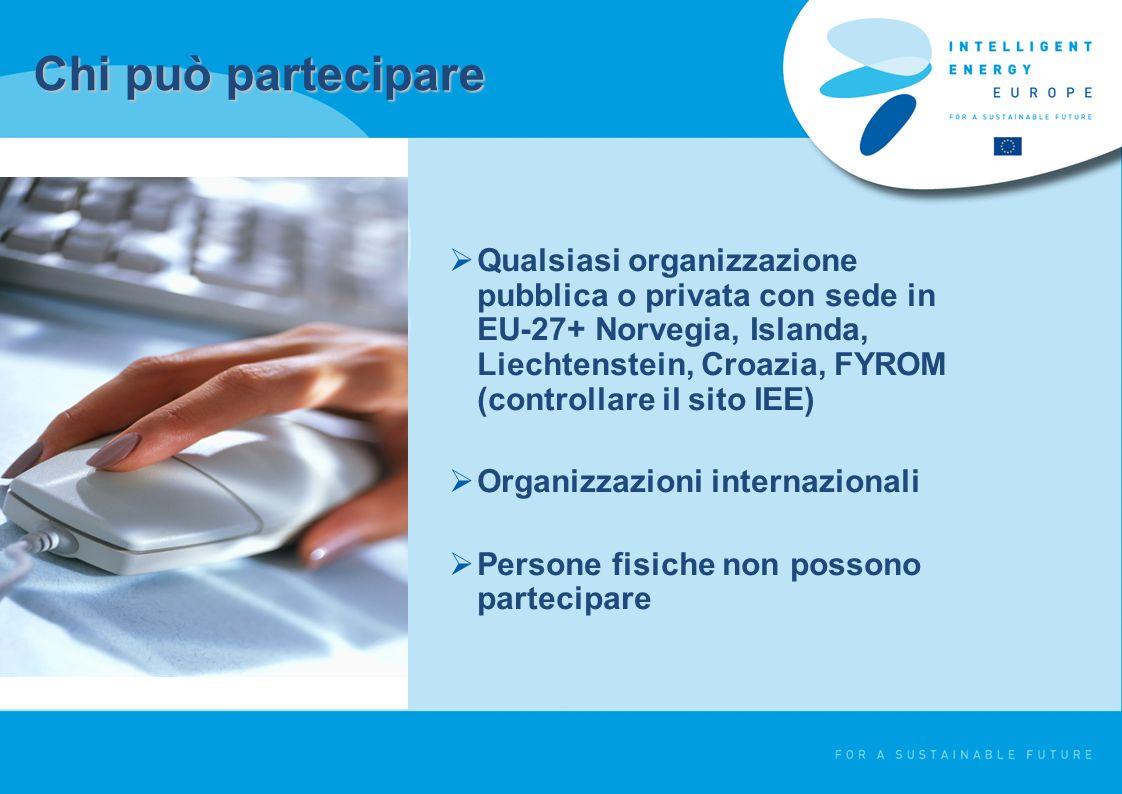 Chi può partecipare Qualsiasi organizzazione pubblica o privata con sede in EU-27+ Norvegia, Islanda, Liechtenstein, Croazia, FYROM (controllare il sito IEE) Organizzazioni internazionali Persone fisiche non possono partecipare