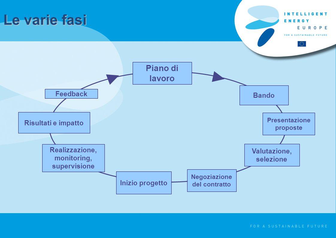 Le varie fasi Bando Presentazione proposte Valutazione, selezione Negoziazione del contratto Inizio progetto Realizzazione, monitoring, supervisione Risultati e impatto Feedback Piano di lavoro