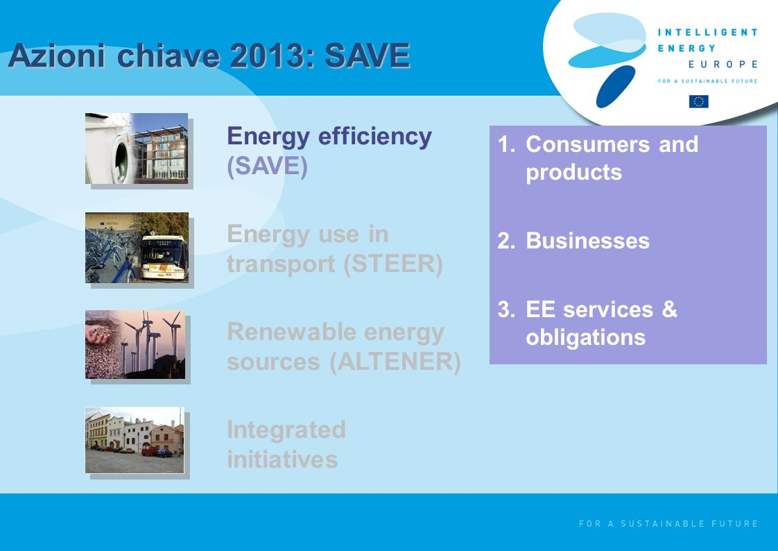 Azioni chiave 2013: SAVE 1.Consumers and products 2.Businesses 3.EE services & obligations Energy efficiency (SAVE) Energy use in transport (STEER) Renewable energy sources (ALTENER) Integrated initiatives