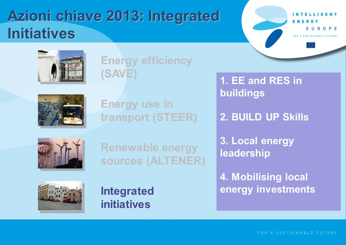 Energy efficiency (SAVE) Energy use in transport (STEER) Renewable energy sources (ALTENER) Integrated initiatives 1.