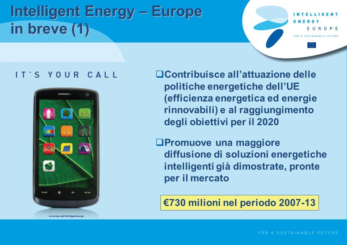 Intelligent Energy – Europe in breve (1) Contribuisce allattuazione delle politiche energetiche dellUE (efficienza energetica ed energie rinnovabili) e al raggiungimento degli obiettivi per il 2020 Promuove una maggiore diffusione di soluzioni energetiche intelligenti già dimostrate, pronte per il mercato 730 milioni nel periodo 2007-13