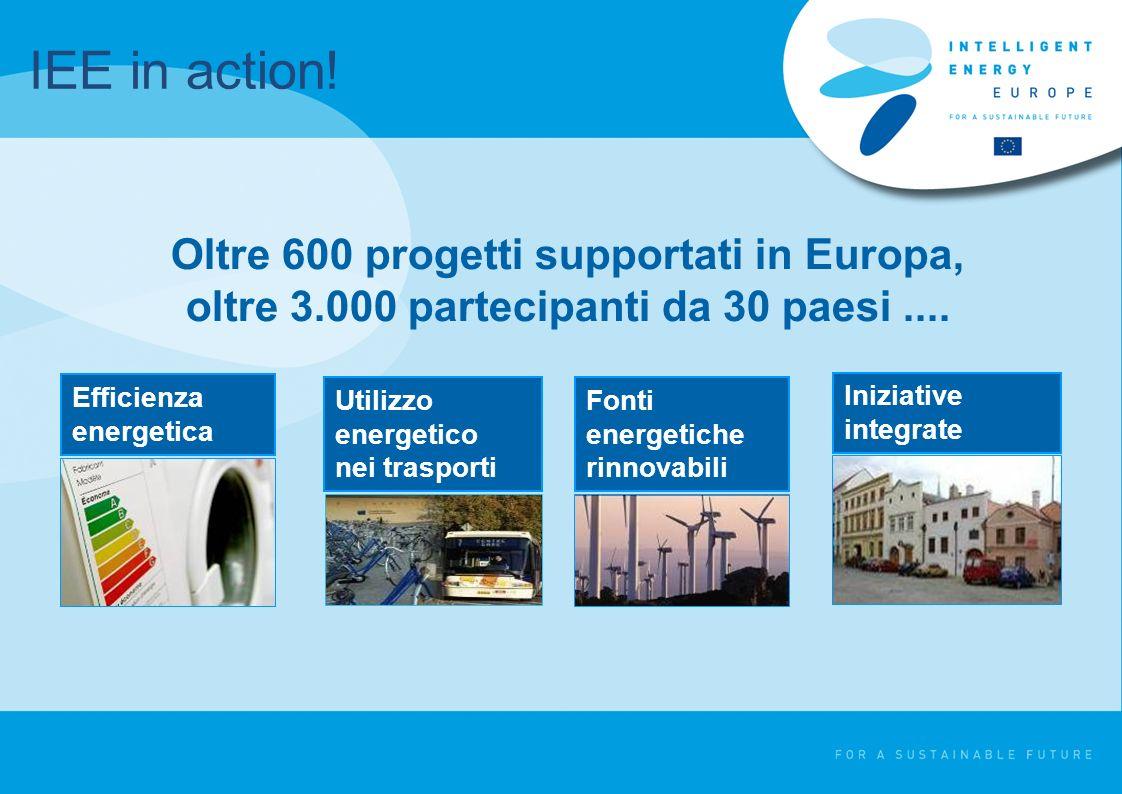Fonti energetiche rinnovabili Efficienza energetica Oltre 600 progetti supportati in Europa, oltre 3.000 partecipanti da 30 paesi....