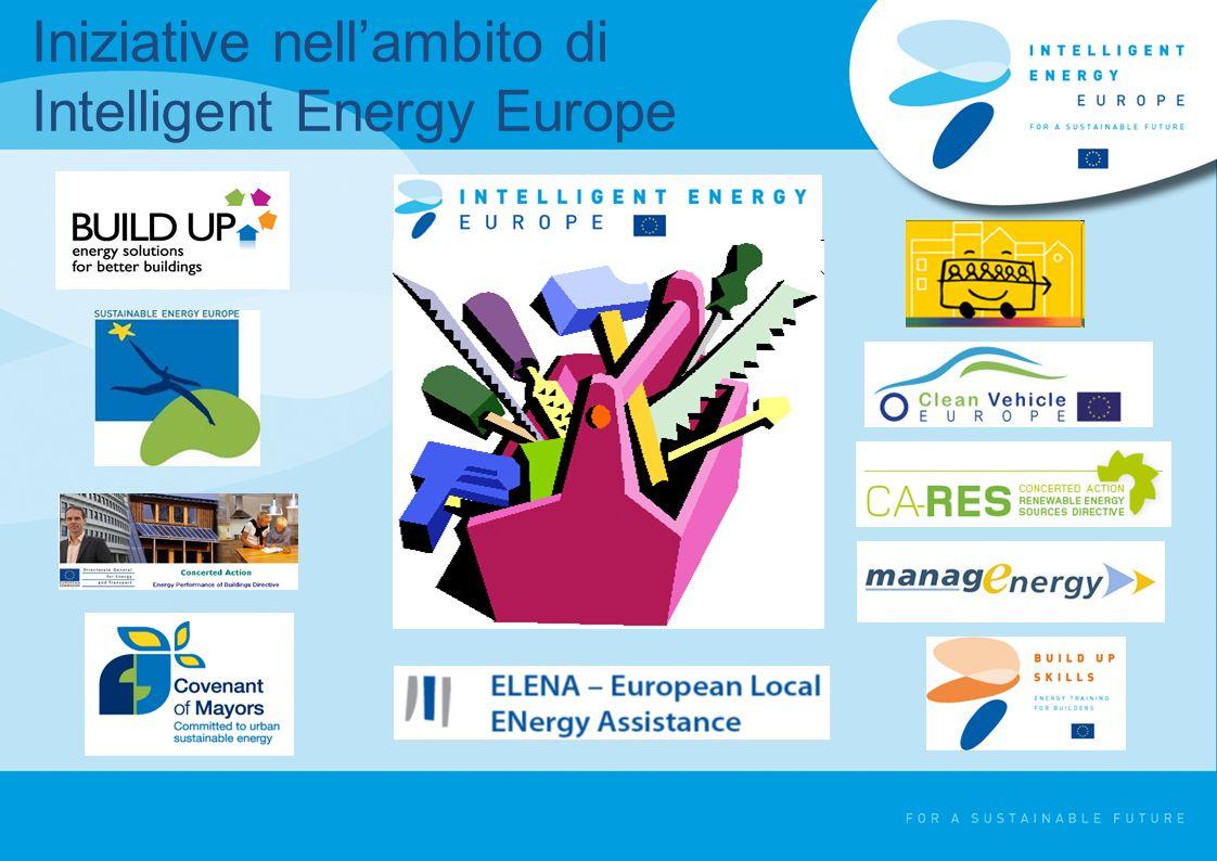 Chi può beneficiare del programma IEE.