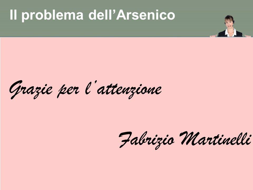 Grazie per lattenzione Fabrizio Martinelli Il problema dellArsenico