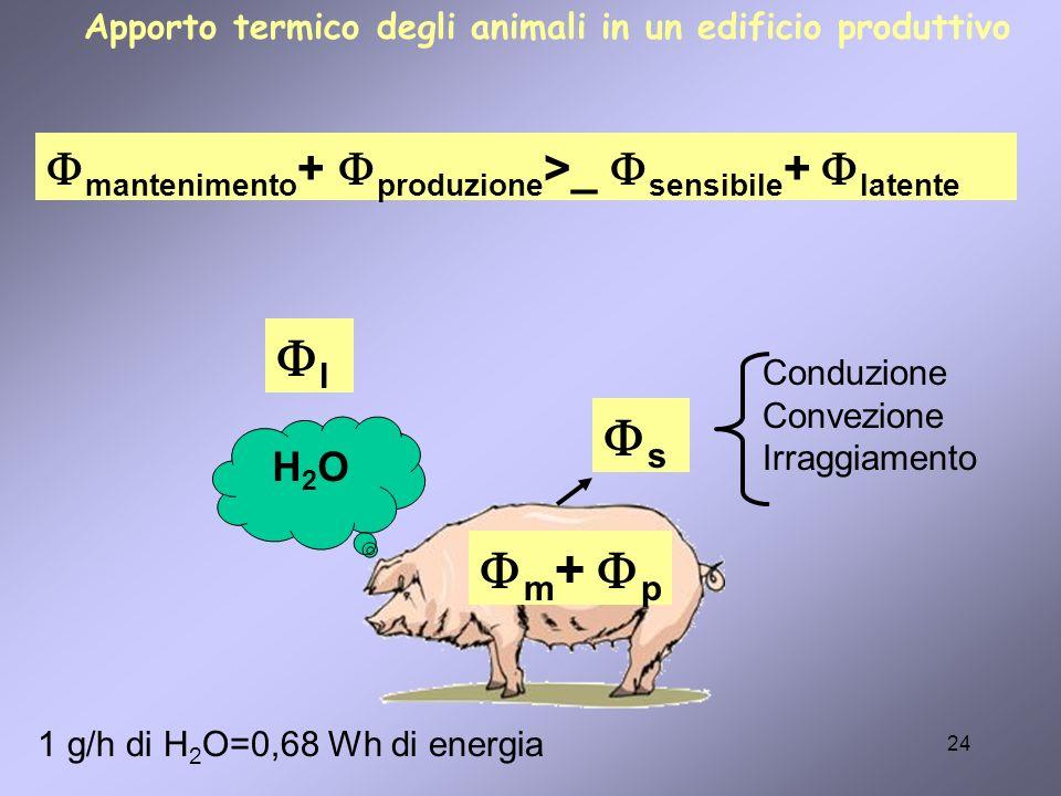 24 m + p s l H2OH2O Conduzione Convezione Irraggiamento mantenimento + produzione >_ sensibile + latente 1 g/h di H 2 O=0,68 Wh di energia Apporto ter
