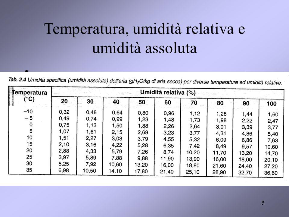 5 Temperatura, umidità relativa e umidità assoluta