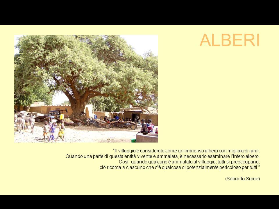 Il villaggio è considerato come un immenso albero con migliaia di rami.