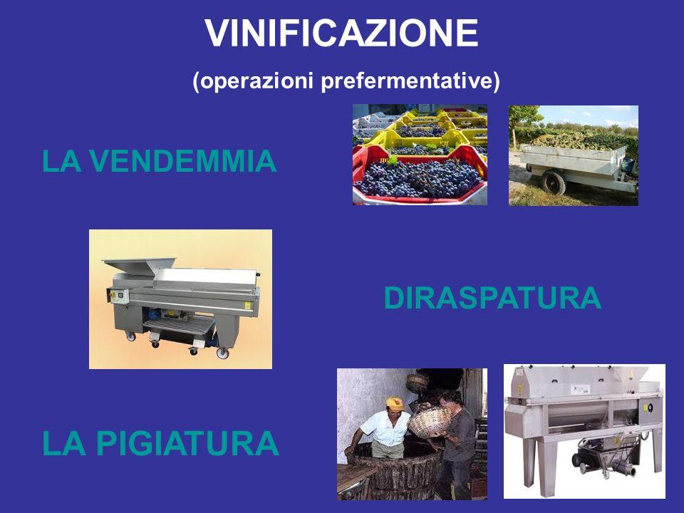 VINIFICAZIONE (operazioni prefermentative) LA VENDEMMIA DIRASPATURA LA PIGIATURA