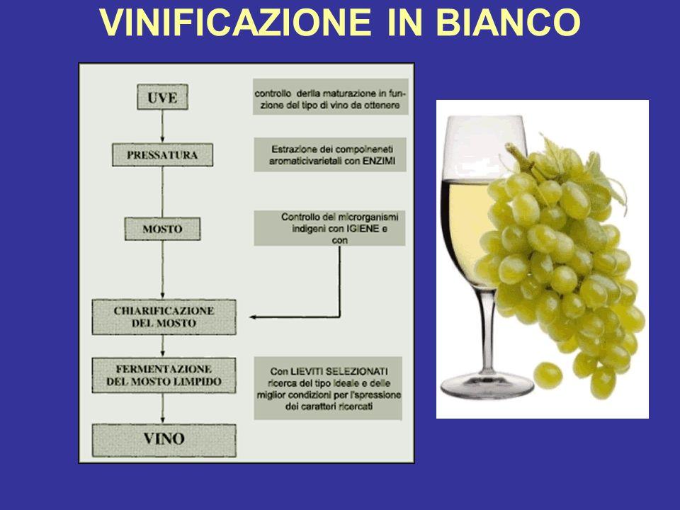 LIMPORTANZA DELLETICHETTA I vini sono classificati in: Vini da tavola Vini IGT Vini VQPRD, che a loro volta si distinguono i DOCG e DOC I vini IGT e VQPRD vengono prodotti seguendo un insieme di regole che costituiscono ildisciplinare di produzione.