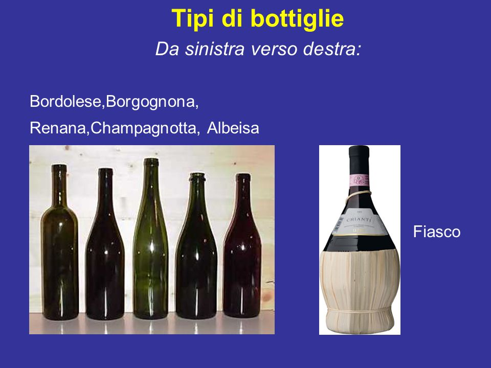 Tipi di bottiglie Da sinistra verso destra: Bordolese,Borgognona, Renana,Champagnotta, Albeisa Fiasco