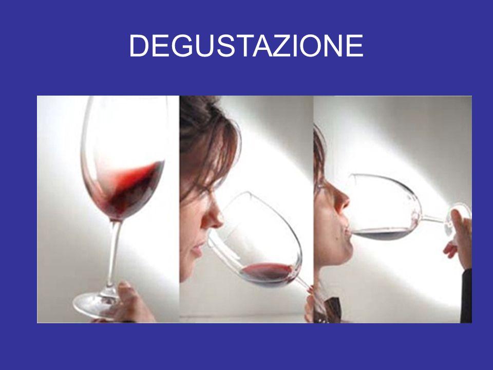 Le sensazioni tattili Le sensazioni tattili sono avvertibili soprattutto dalle mucose e dalle papille filiformi; quelle di rilevante importanza nel vino sono: Termica (temperatura) Calorica (alcoli) Astringente (tannini) Pungente (anidride carbonica) Consistente (estratto)