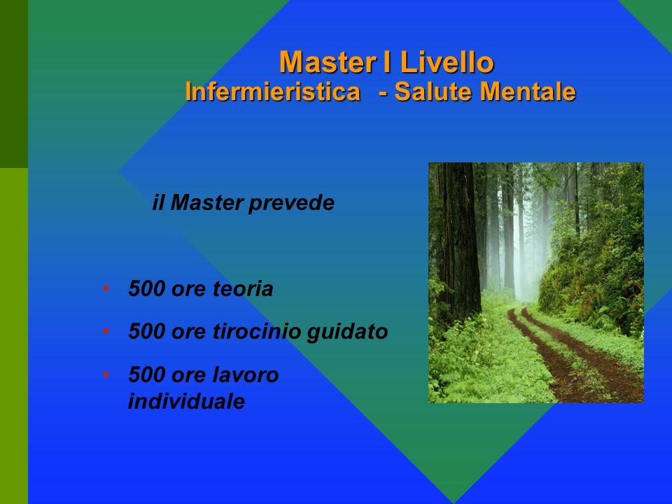 Università di Siena Polo Grossetano: la nostra esperienza E. Sciascetti G. Jadimarco