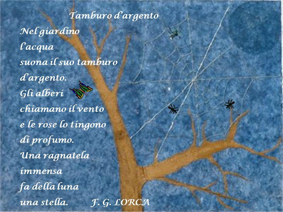 Tamburo dargento Nel giardino lacqua suona il suo tamburo dargento. Gli alberi chiamano il vento e le rose lo tingono di profumo. Una ragnatela immens