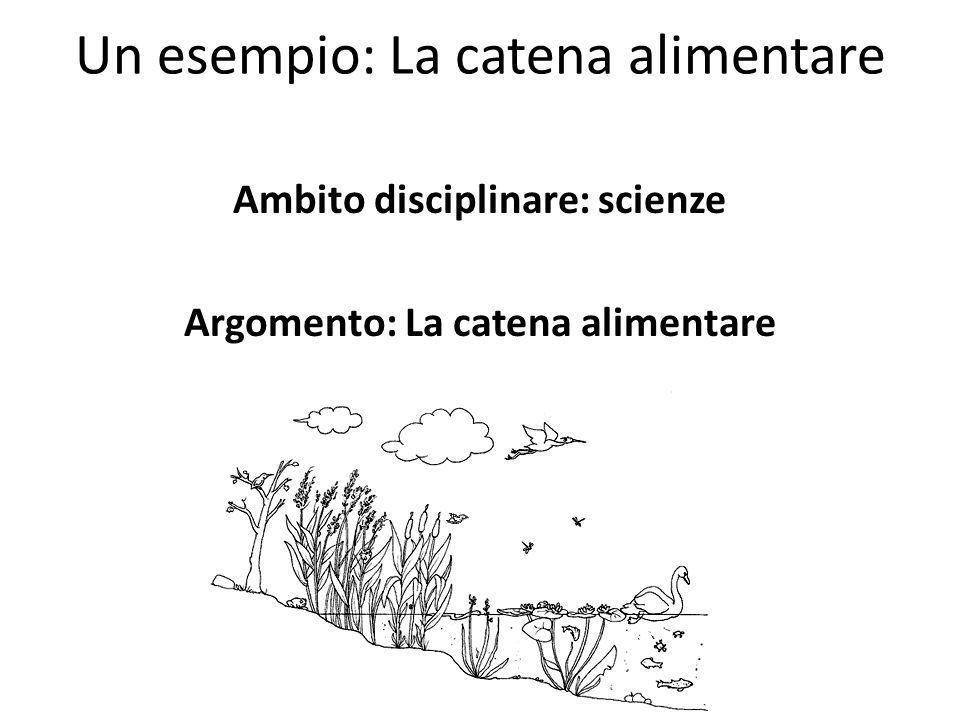 Un esempio: La catena alimentare Ambito disciplinare: scienze Argomento: La catena alimentare
