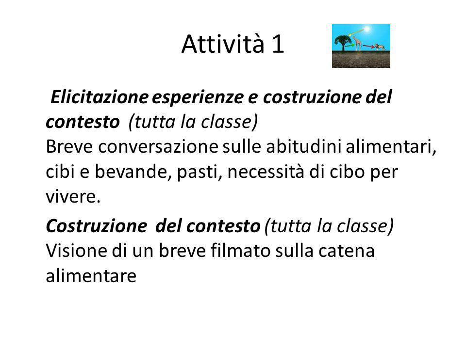 Attività 1 Elicitazione esperienze e costruzione del contesto (tutta la classe) Breve conversazione sulle abitudini alimentari, cibi e bevande, pasti,