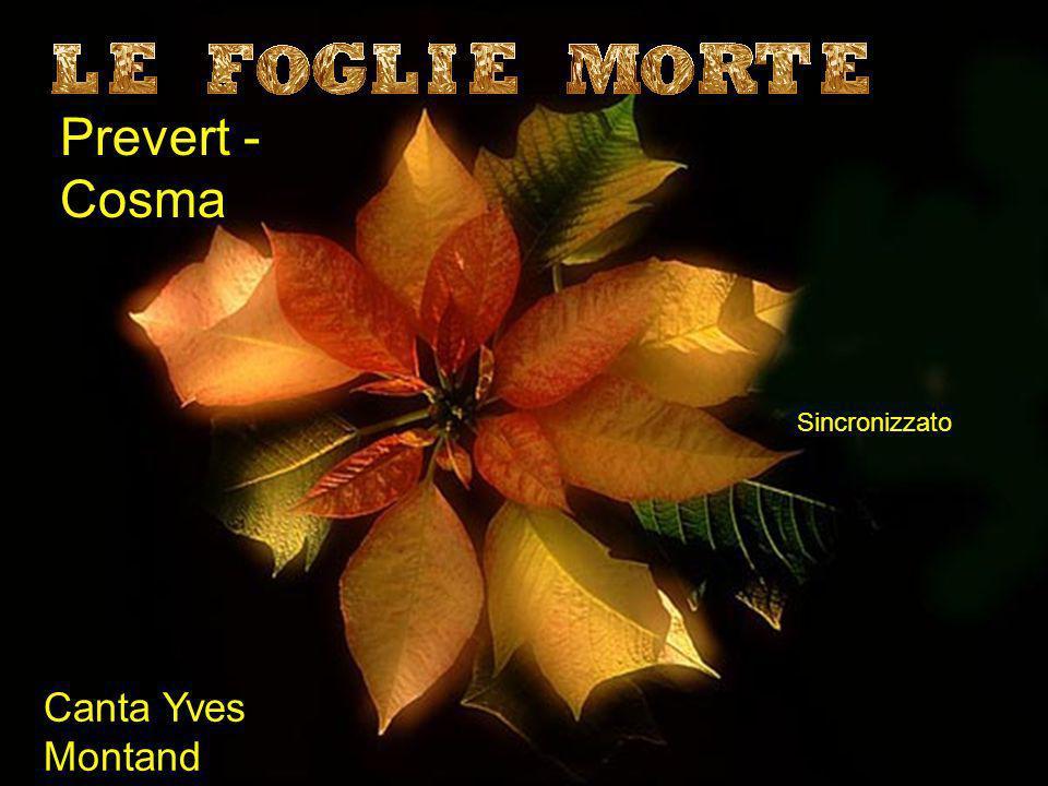 Prevert - Cosma Canta Yves Montand Sincronizzato