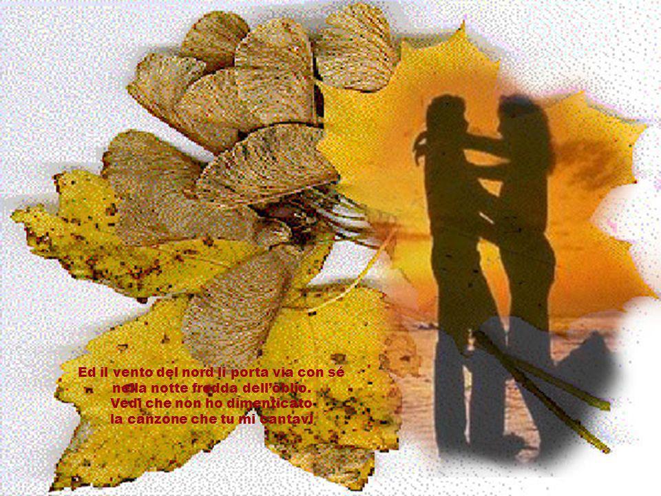 Le foglie morte si raccolgono. Tu vedi, non lho dimenticato: le foglie morte si raccolgono anche i ricordi ed i rimpianti.