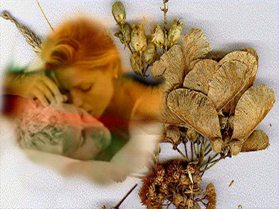 Ma la vita separa coloro che si amano; dolcemente senza far rumore. Ed il mare cancella sulla sabbia i passi degli amanti divisi