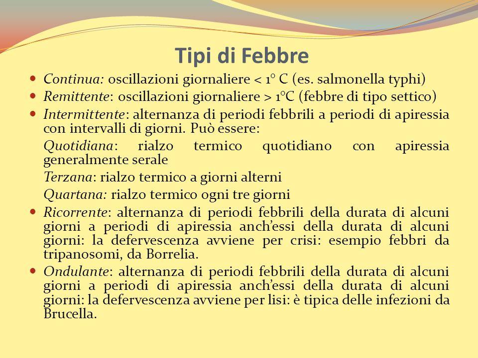 Tipi di Febbre Continua: oscillazioni giornaliere < 1° C (es.