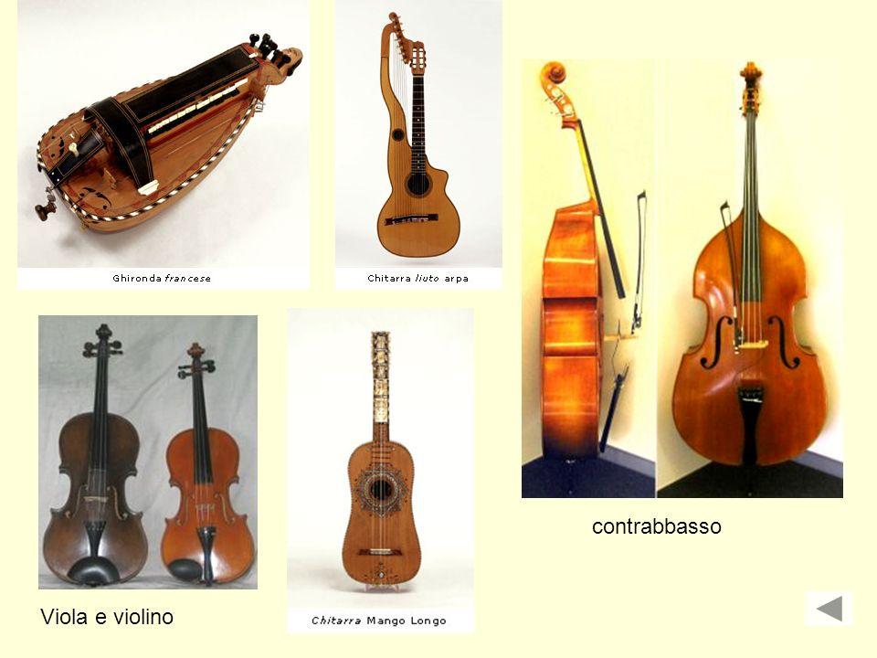 Viola e violino contrabbasso