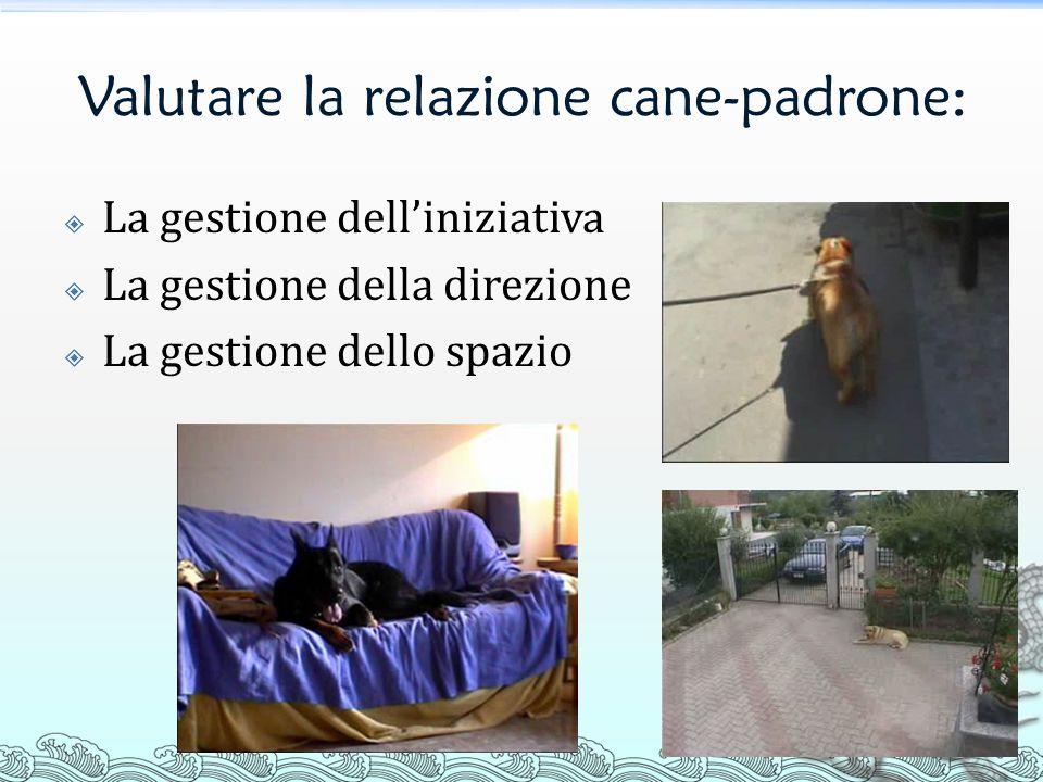 Valutare la relazione cane-padrone: La gestione delliniziativa La gestione della direzione La gestione dello spazio