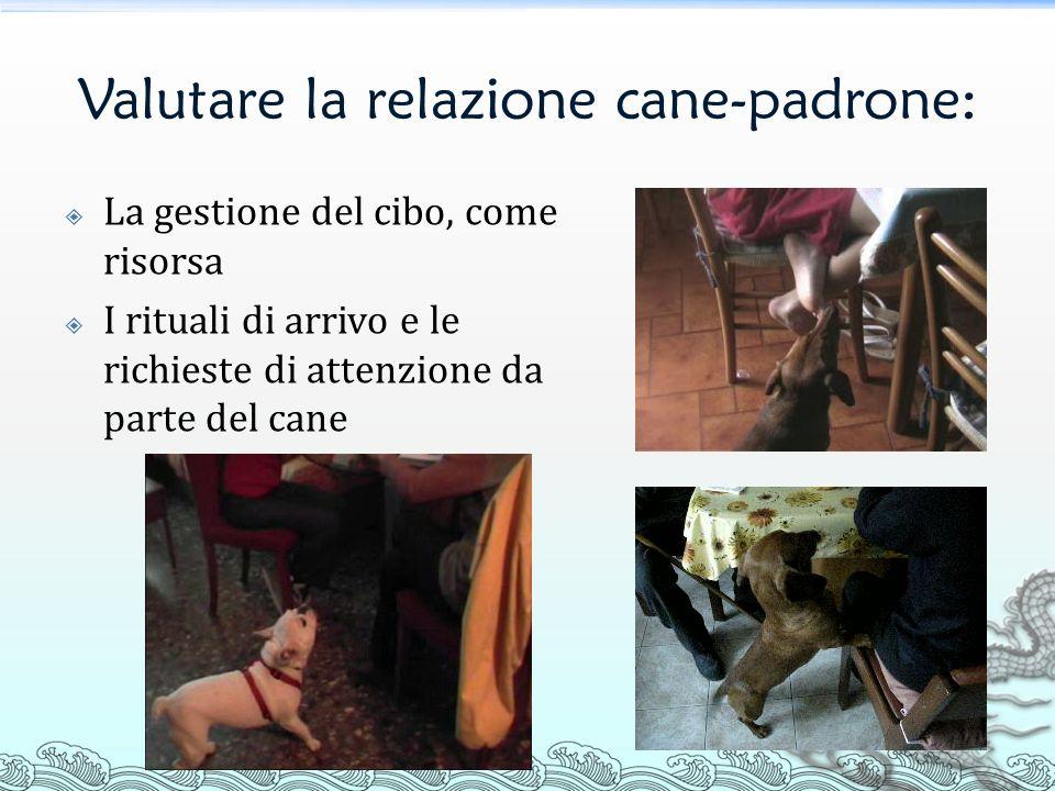 Valutare la relazione cane-padrone: La gestione del cibo, come risorsa I rituali di arrivo e le richieste di attenzione da parte del cane