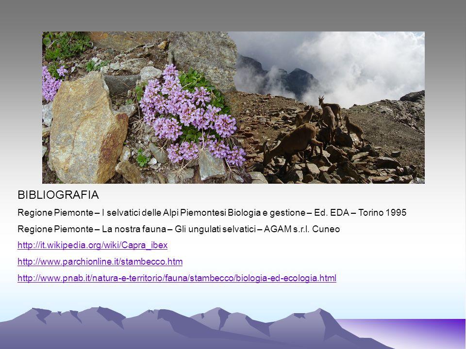BIBLIOGRAFIA Regione Piemonte – I selvatici delle Alpi Piemontesi Biologia e gestione – Ed. EDA – Torino 1995 Regione Piemonte – La nostra fauna – Gli