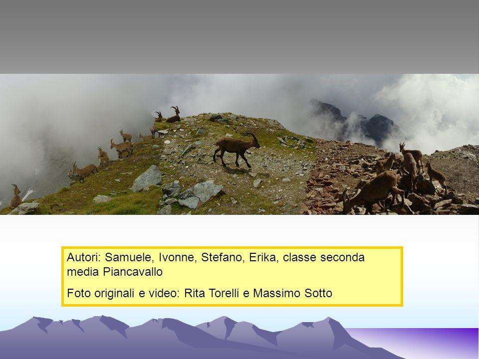 Autori: Samuele, Ivonne, Stefano, Erika, classe seconda media Piancavallo Foto originali e video: Rita Torelli e Massimo Sotto