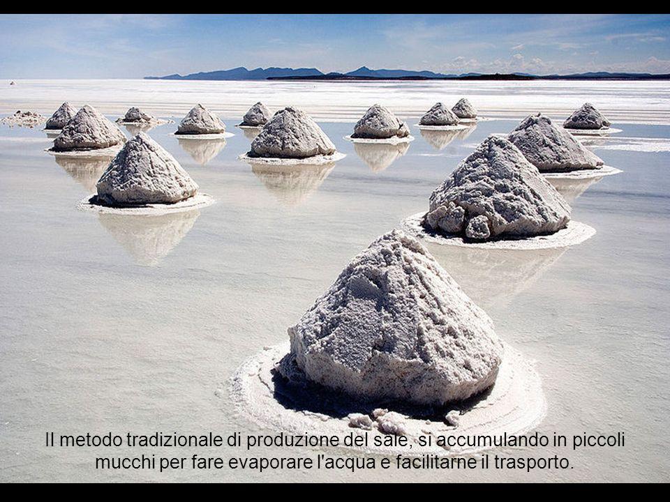 Il deserto salato del Uyuni si stima che contenga circa 10 miliardi di tonnellate di sale. Ogni anno ne vengono estratte 25 mila tonnellate.