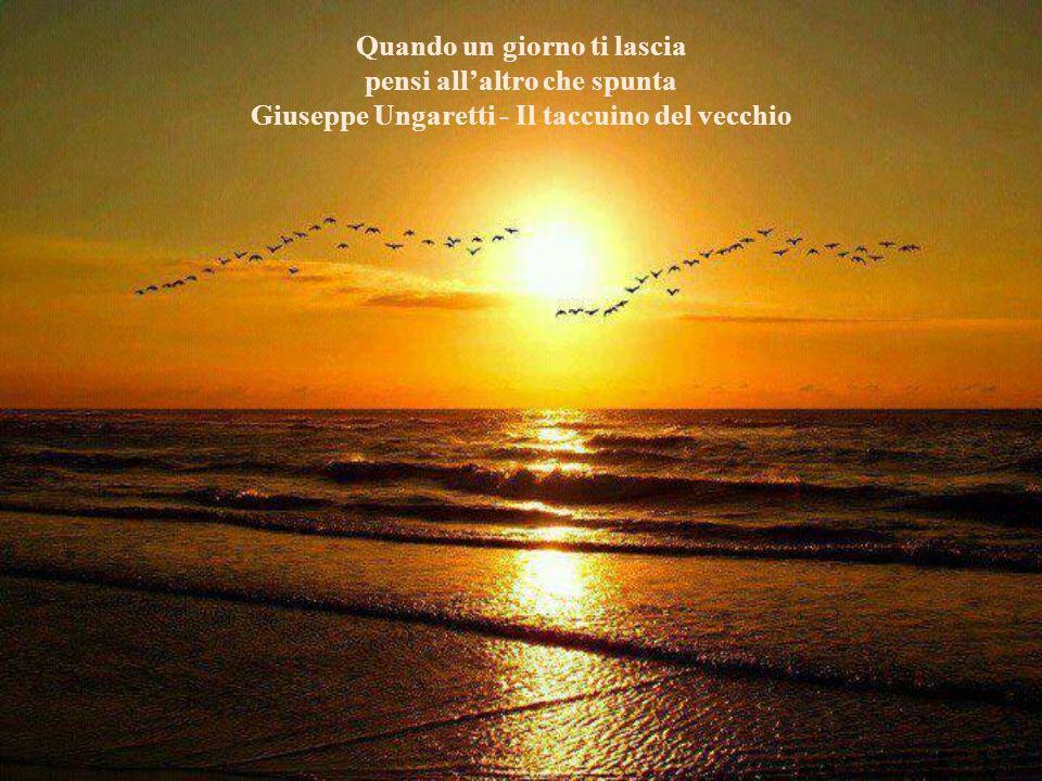 Vivo un eterno conflitto. Adoro l'alba ma vorrei che la notte non finisse mai... Giuseppe Donadei