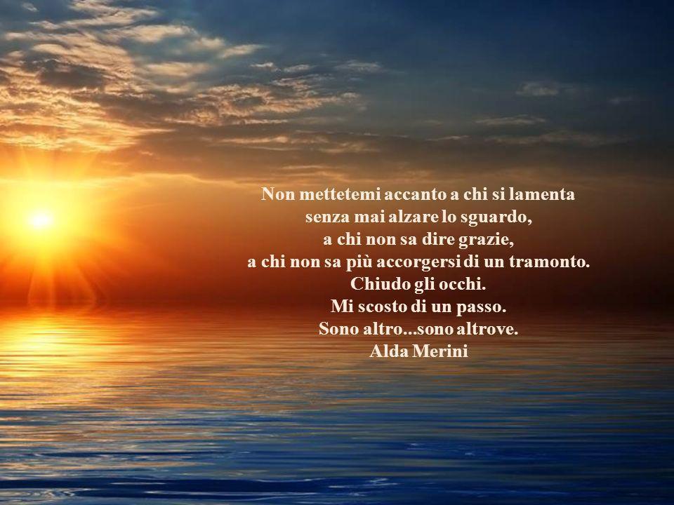Non mettetemi accanto a chi si lamenta senza mai alzare lo sguardo, a chi non sa dire grazie, a chi non sa più accorgersi di un tramonto.
