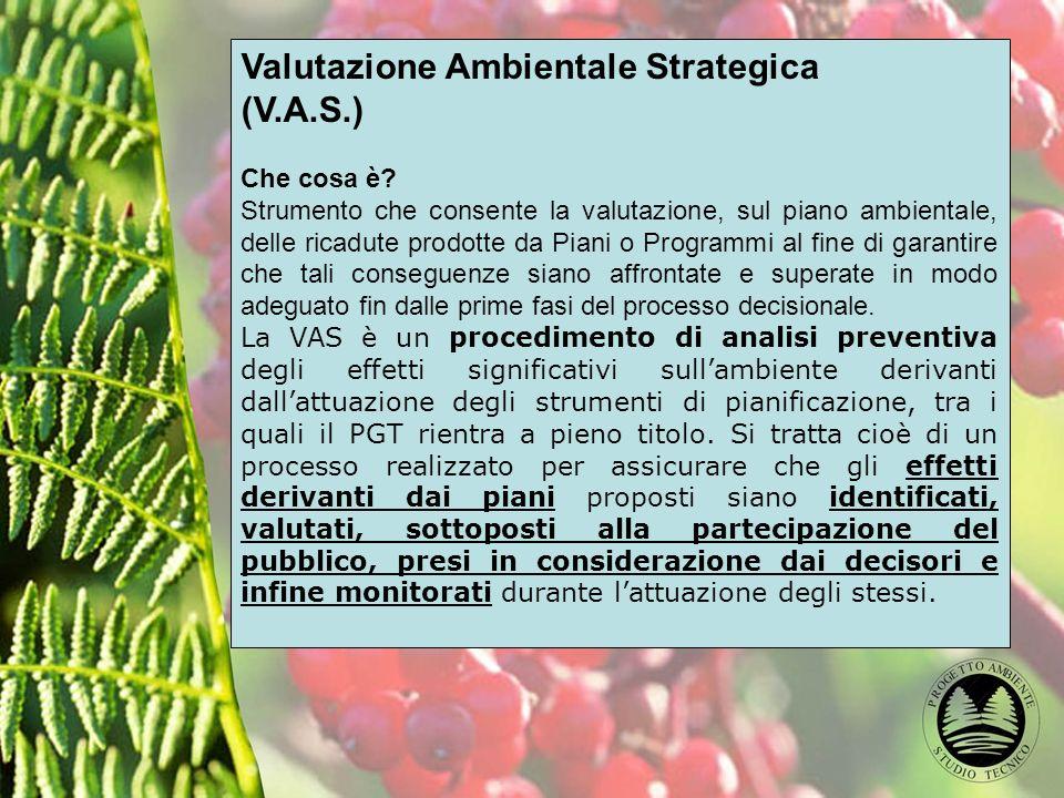 Valutazione Ambientale Strategica (V.A.S.) Che cosa è.