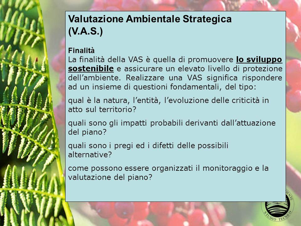 Valutazione Ambientale Strategica (V.A.S.) Finalità La finalità della VAS è quella di promuovere lo sviluppo sostenibile e assicurare un elevato livello di protezione dellambiente.