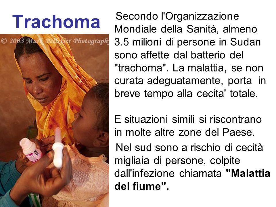 Trachoma Secondo l'Organizzazione Mondiale della Sanità, almeno 3.5 milioni di persone in Sudan sono affette dal batterio del