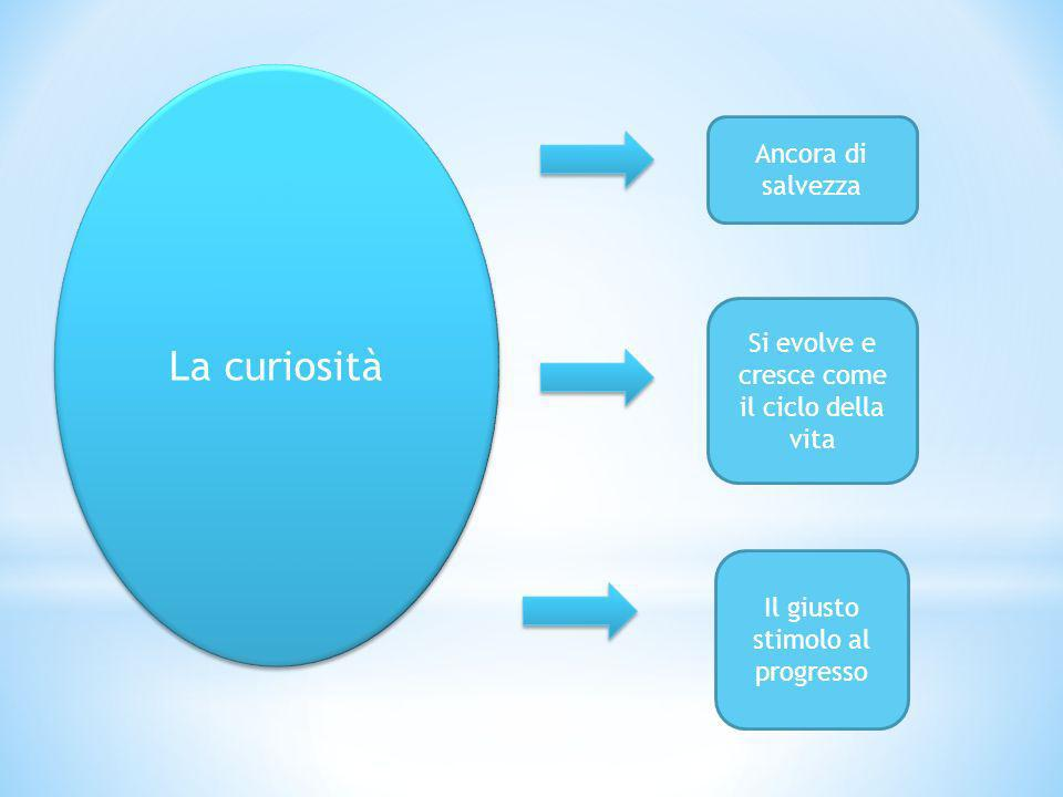 La curiosità Ancora di salvezza Si evolve e cresce come il ciclo della vita Il giusto stimolo al progresso
