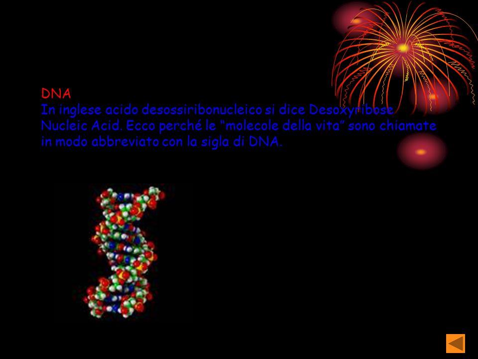 Recessivo Gene perdente a= allele recessivo