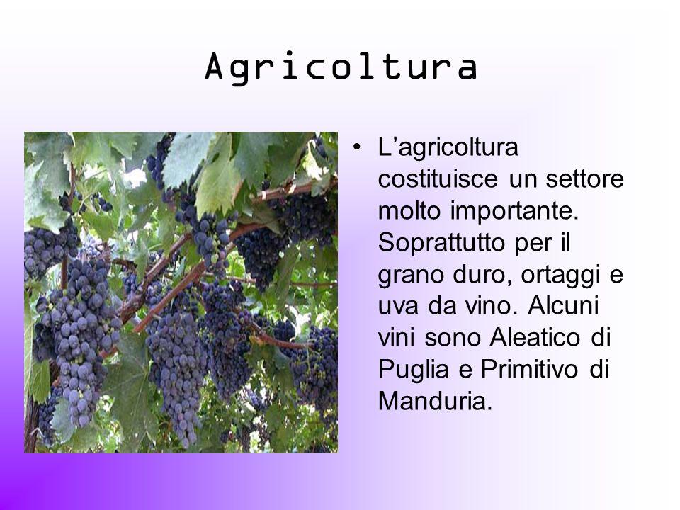 Agricoltura Lagricoltura costituisce un settore molto importante. Soprattutto per il grano duro, ortaggi e uva da vino. Alcuni vini sono Aleatico di P