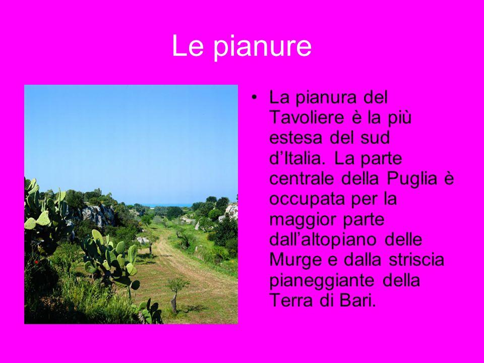 Le pianure La pianura del Tavoliere è la più estesa del sud dItalia. La parte centrale della Puglia è occupata per la maggior parte dallaltopiano dell