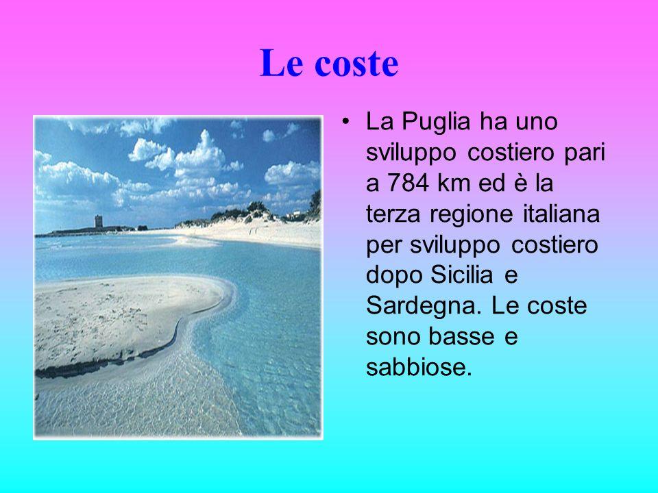 Le coste La Puglia ha uno sviluppo costiero pari a 784 km ed è la terza regione italiana per sviluppo costiero dopo Sicilia e Sardegna. Le coste sono