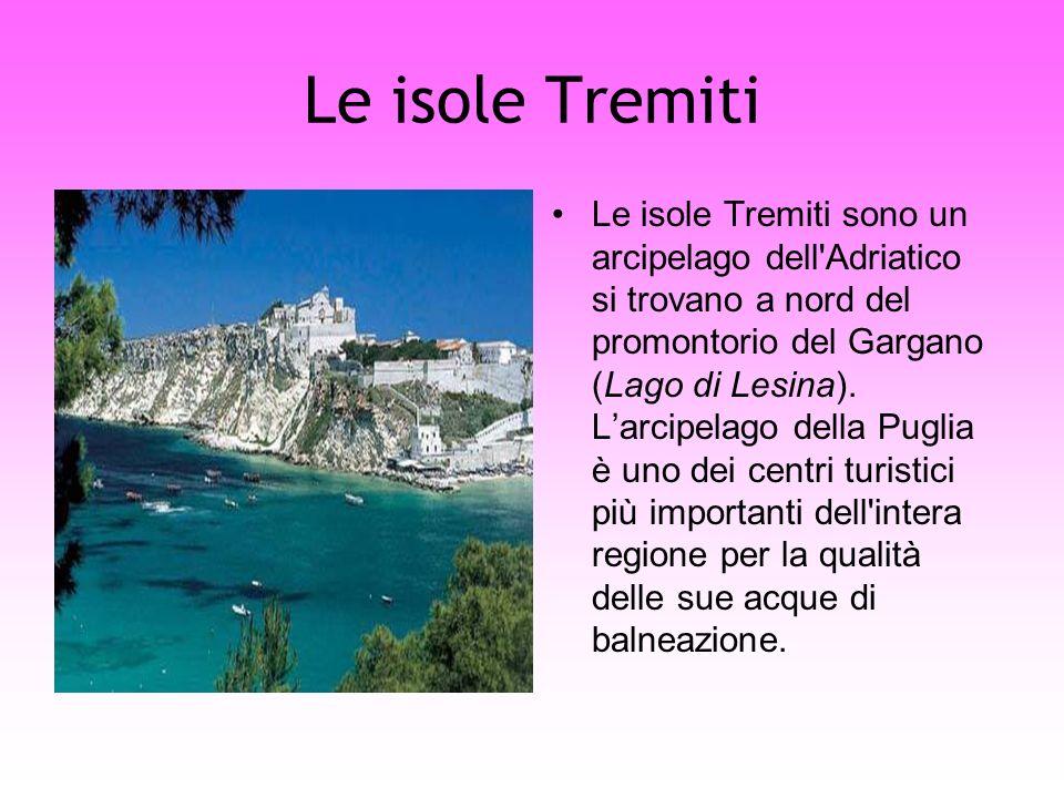 Le isole Tremiti Le isole Tremiti sono un arcipelago dell'Adriatico si trovano a nord del promontorio del Gargano (Lago di Lesina). Larcipelago della