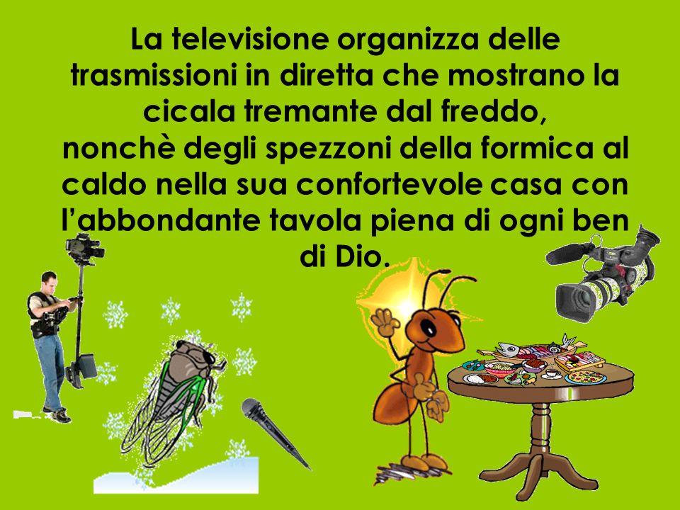 La televisione organizza delle trasmissioni in diretta che mostrano la cicala tremante dal freddo, nonchè degli spezzoni della formica al caldo nella sua confortevole casa con labbondante tavola piena di ogni ben di Dio.